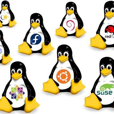 Curso Gratuito Distribuições Linux: Instalação e Análise | Bóson Treinamentos