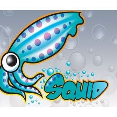 Curso Servidor Proxy com Squid no Linux