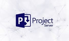 Curso Microsoft EPM | Project Server | Portfólio de Projetos