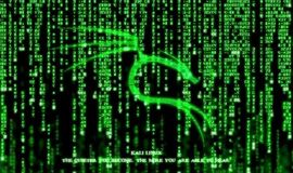 Curso Hacker Ético Profissional com Kali Linux