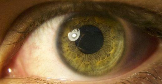 Conheça a tecnologia que vai diagnosticar doenças