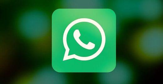 Como atualizar o whatsapp gb?