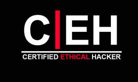 Curso Certificação Ethical Hacker (CEH) | Person