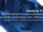 Gestão de TI: reúna elementos para satisfazer seu cliente, automatize processos