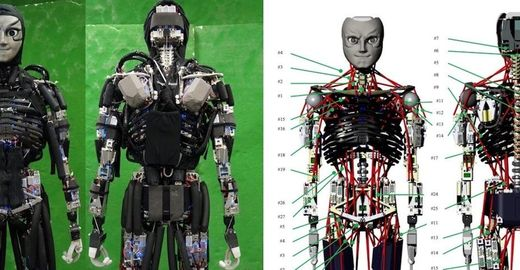 Robô já é capaz até mesmo de suar