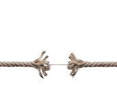 Função Vital do Negócio e Ponto Único de Falha