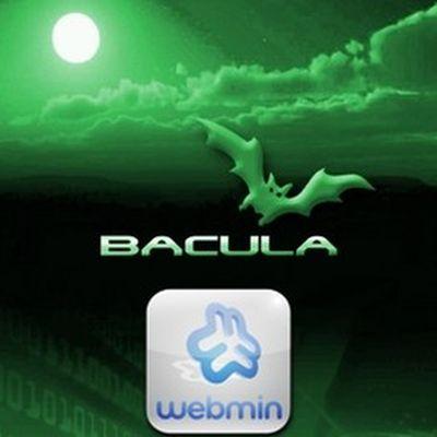 Curso Bacula 2: Webmin para Configuração e Administração Gráficas