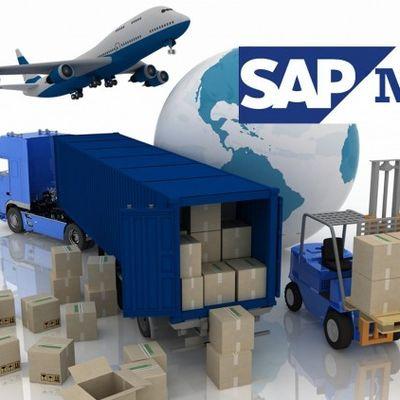 Curso Gratuito de SAP MM - Visão Geral