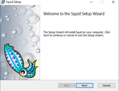 Windows Server 2016 - SquidNT