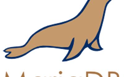 Instalação do MariaDB (SGBD) no Linux Debian